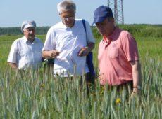 Зав. отделом экологии к.б.н. С.И.Тарасов (в центре)