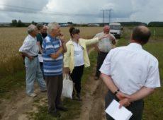 Члены комиссии принимают полевой опыт по изучению эффективности длительного применения соломы